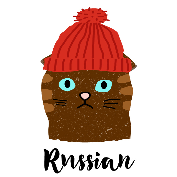 80 awesome resources to learn Russian language | PetitePolyglot